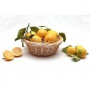 Lot de 10kg de Citrons de Menton IGP Catégorie I